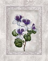 Floral II Fine-Art Print