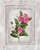 Floral III Fine-Art Print