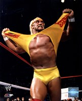 Hulk Hogan in action Fine-Art Print