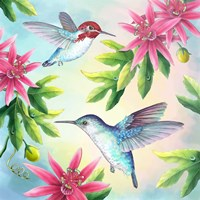 Bee Hummingbirds Fine-Art Print