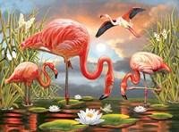Flamingos Fine-Art Print