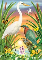 Green And White Herons Fine-Art Print