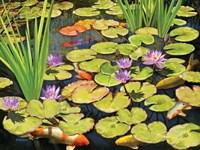 Koi Pond II Fine-Art Print