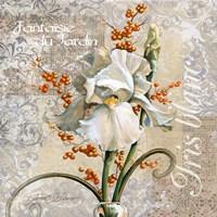 White Iris Fantasy Fine-Art Print