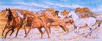 Desert Run Fine-Art Print