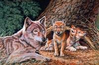 Wolf Den Fine-Art Print