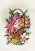 Basket Of Phlox Fine-Art Print