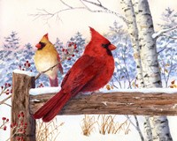 Cardinal Pair with Birch Fine-Art Print