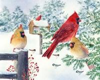 Cardinals In Snow Flurry Fine-Art Print