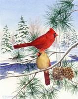 Cedar Farms Cardinals II Fine-Art Print
