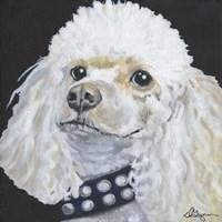 Dlynn's Dogs - Harley Fine-Art Print