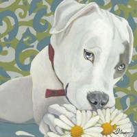 Dlynn's Dogs - Patch Fine-Art Print