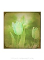 White Flowers VIII Fine-Art Print