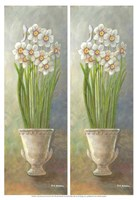 2-Up Narcissus Vertical Fine-Art Print