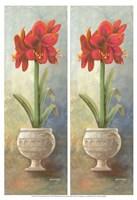 2-Up Amaryllis Vertical Fine-Art Print