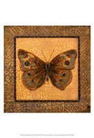 Crackled Butterfly - Buckeye Fine-Art Print