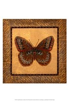 Crackled Butterfly - Fritillary Fine-Art Print