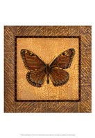Crackled Butterfly - Monarch Fine-Art Print