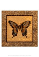 Crackled Butterfly - Swallowtail Fine-Art Print