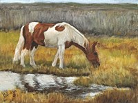 Meadow Munching Fine-Art Print