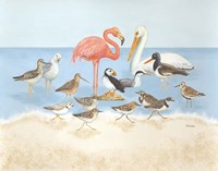 Seabird Summit Fine-Art Print