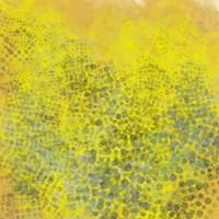 Hive II Fine-Art Print