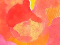 Cabbage Rose II Fine-Art Print