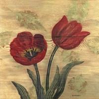 Tulip on Wood Fine-Art Print