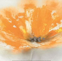 Wild Orange Sherbet I Fine-Art Print