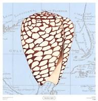 Seashore Gifts I Fine-Art Print