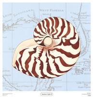 Seashore Gifts II Fine-Art Print
