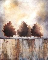 Tres Trees Fine-Art Print