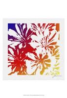 Floral Brights I Fine-Art Print
