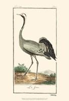 Buffon Cranes & Herons IV Fine-Art Print