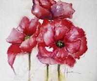 Fuchsia Poppies I Fine-Art Print