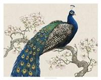 Peacock & Blossoms I Fine-Art Print
