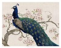 Peacock & Blossoms II Fine-Art Print