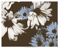 Chocolate Bloom I Fine-Art Print