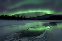 Reflected aurora over a frozen Laksa Lake, Nordland, Norway Fine-Art Print