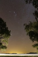 The Orion constellation between trees, Buenos Aires, Argentina Fine-Art Print
