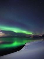 Aurora Borealis over Vagsfjorden in Troms County, Norway Fine-Art Print