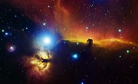 Alnitak region in Orion with Flame Nebula (NGC 2024), and Horsehead Nebula Fine-Art Print