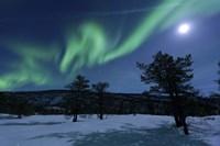 Aurora Borealis, Forramarka, Troms, Norway Fine-Art Print