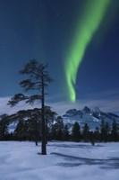 Moonlight and aurora over Nova Mountain Wilderness, Norway Fine-Art Print