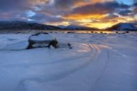 A winter sunset over Tjeldsundet at Evenskjer, Troms County, Norway Fine-Art Print