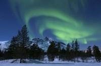 Aurora Borealis over Nova Mountain Wilderness, Troms, Norway Fine-Art Print
