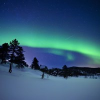 Aurora Borealis and a shooting star in the woods of Troms County, Norway Fine-Art Print