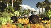 Prehistoric glyptodonts graze on grassy plains Fine-Art Print