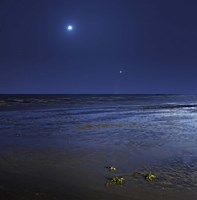 Venus shines brightly below the crescent Moon from coast of Buenos Aires, Argentina Fine-Art Print