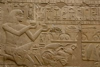 Egypt, Luxor, Luxor Temple, Hieroglyphics Fine-Art Print